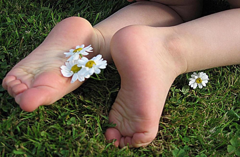 pieds-paquerettes-galerie reflexologie